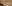 Organ-King-of-Instruments.jpg
