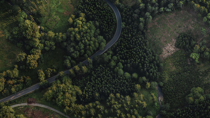 ariel-view-of-road-cutting-through-trees